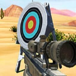 Hit Targets Shooting
