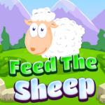 Feed The Sheep