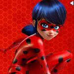 Miraculous Ladybug Puzzle